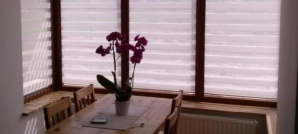 skuteczna ochrona przed słońcem w domu