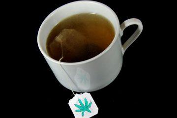 herbata konopna