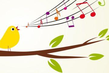 lekcje wokalu - sprawdź kurs śpiewu od SmileFlow Kraków